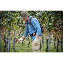Sécateur viticole ASA 65 STIHL