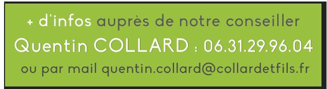 Bouton dappel à laction Quentin COLLARD.png