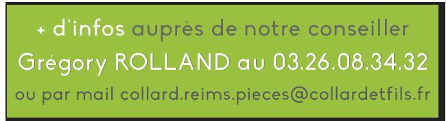 GRÉGORY ROLLAND-bouton dappel à laction.png
